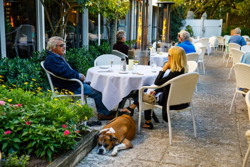 Dog and Diners in Ridgway Garden